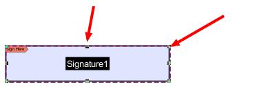 Edit signature field