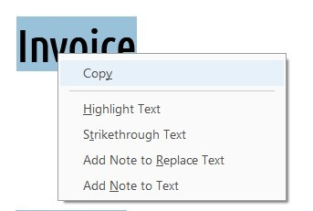 Copy entry in the text selection right-click menu